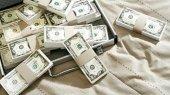 Минфин привлечет у населения валюту под 9,2%