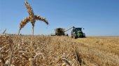 Крупный агрохолдинг KSG Agro выкупает свои акции на Варшавской бирже