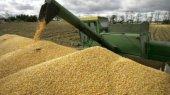 Минагропрод разрешил вывезти из Украины больше пшеницы