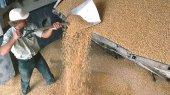 Украина в 2012 году увеличила экспорт сельхозпродукции на 20% — до $17 млрд.
