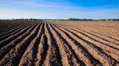 Чтобы получить земельный участок, нужно будет поработать на земле