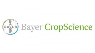 Немецкий Bayer построит станцию селекции пшеницы под Киевом | АПК | Дело