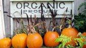 Как государство будет контролировать качество органической продукции