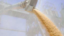 Чем привлекает инвесторов перевалка зерна в украинских портах? | Транспорт | Дело