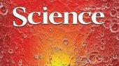 Самые важные научные открытия 2013 года