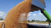 Украина уже экспортировала 18,5 млн тонн зерна