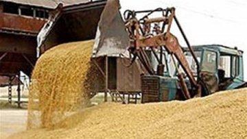 Китай все-таки судится с Украиной из-за поставок зерна | АПК | Дело