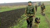 Минобороны сообщает о создании огневых позиций вдоль границы на востоке Украины