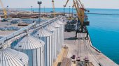 Порты нарастили перевалку зерновых более чем наполовину