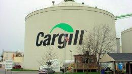 Cargill остановила работу завода в Донецкой области, предприятие захвачено боевиками | Компании | Дело