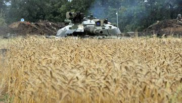 Аграрии направили военным 617 тонн продовольствия | Общество | Дело