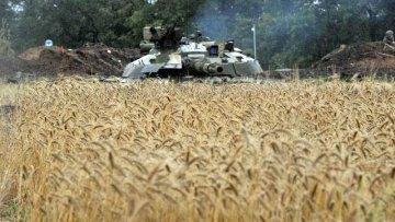 Террористы из ДНР препятствуют вывозу зерна на экспорт | АПК | Дело