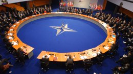 Украина в ноябре может получить особый статус вне НАТО — МИД | Политика | Дело