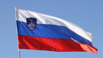 Словакия продолжает недополучать газ из России | Энергетика | Дело