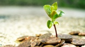 НБУ разрешил аграриям платить по импортным договорам