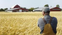 Как решить проблему дефицита кадров в аграрной отрасли | Карьера | Дело