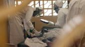 Число жертв лихорадки Эбола приближается к пяти тысячам