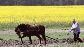 Коалиционное соглашение: чего ждать аграриям?   АПК   Дело