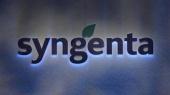 Крупный мировой производитель семян Syngenta уволит 1,8 тыс. рабочих