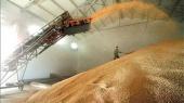 Агрохолдинг Trigon Agri получил 2,5 млн евро убытка