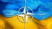 Украина разрабатывает реформу армии совместно с НАТО