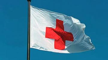 В российском Красном Кресте назвали десять конвоев РФ вторжением | Регионы | Дело