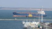 Транспортники заявили о блокировании экологами двух судов в Ильическом порту