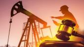 В аукционном комитете по продаже нефти сменили членов