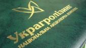 """Кабмин назначил временного главу """"Украгролизинга"""""""