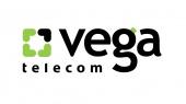 За полугодие убыток Vega вырос до 145 млн грн