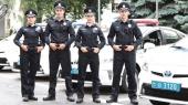 Порошенко подписал закон о штрафных баллах для нарушителей ПДД