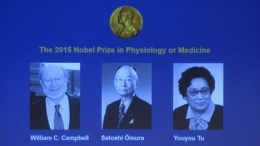 Стали известны победители Нобелевской премии по медицине | Наука | Дело