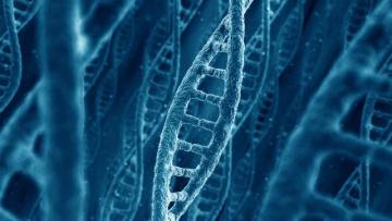 Нобелевскую премию по химии дали за исследование механизмов восстановления ДНК | Наука | Дело