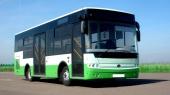 """Корпорация """"Эталон"""" надеется в 2016 году начать экспорт автобусов в Россию"""