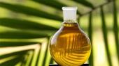 Пальмовое масло продолжает дорожать