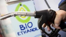 Азербайджанцы займутся выпуском биоэтанола в Сумской области | АПК | Дело