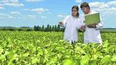 Какие специалисты нужны аграрному сектору