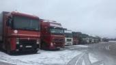 Россия остановила 197 украинских грузовиков — Минтранс России
