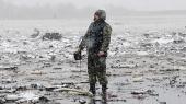 Авиакатастрофа в Ростове: спасатели завершили поиск тел