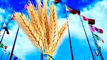 Стали известны крупнейшие покупатели украинского продовольствия в 2016 году | АПК | Дело