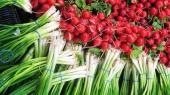 Цены на ранние овощи обвалились на 40%