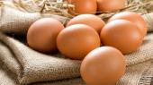 """Агрогруппа """"Овостар Юнион"""" в полтора раза увеличила экспорт яиц"""