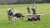 Япония вложит $37 млн в разработку роботов-фермеров