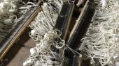 Задержаны браконьеры, выловившие рекордную партию бычка на 14 млн грн