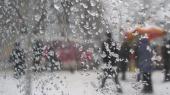 В Карпатах пройдет дождь с мокрым снегом