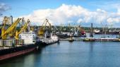 Государство инвестирует 800 млн гривень в строительство морского зернового терминала в Мариуполе