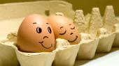 Крупный производитель яиц решил отказаться от выплаты дивидендов